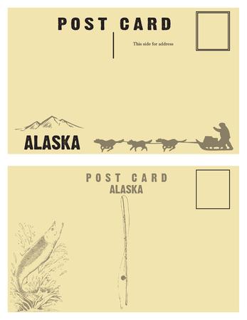 sledge dog: Vintage postcards for state of Alaska with retro illustrations.
