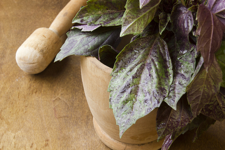 Purple basil in a wooden mortar and pestle