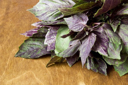 Basil purple and green on a wooden table Imagens