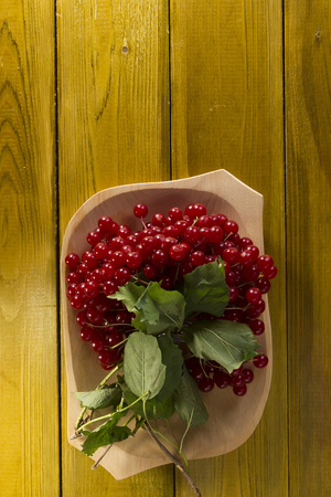 guelder rose berry: Ripe bunch of viburnum on a wooden plate