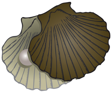 Open sash clam with a pearl.