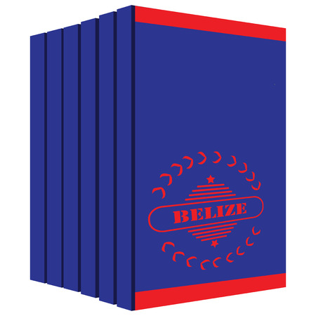 Set of books about Belize, stylized cover under the state flag of the country. Illustration