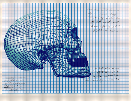Coordinate grid with an abstract image of the human skull