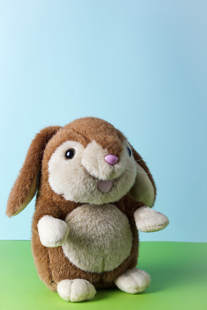 Toy Easter bunny on a blue and green background