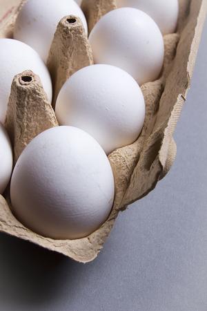 White chicken eggs in egg carton tray