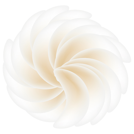 Cream meringue with a symmetrical arrangement of the petals