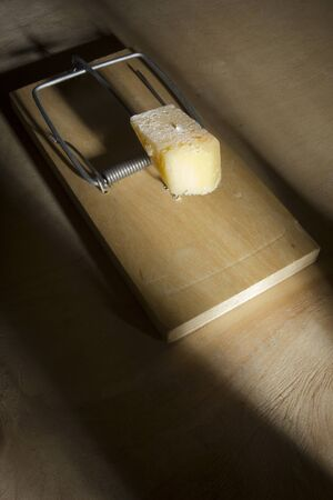 A piece of cheese in a mousetrap on a black background Foto de archivo