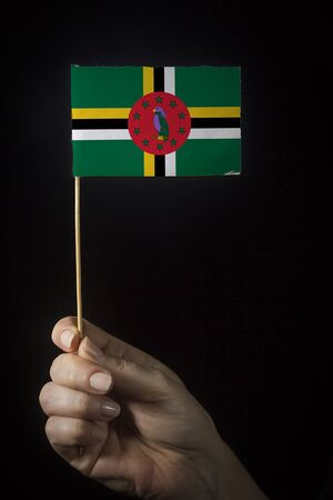 Hand with small flag of state of Dominica