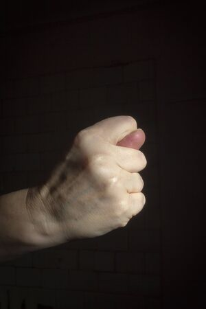 Female hand shows a fig on a black background 写真素材