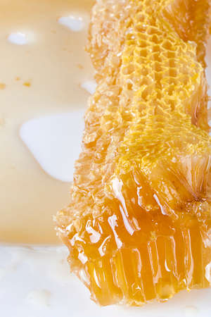 Pieces of honeycombs with organic honey on a white table Reklamní fotografie
