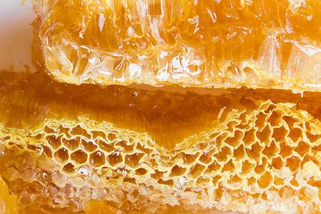 Slice of honeycombs with organic honey closeup Imagens