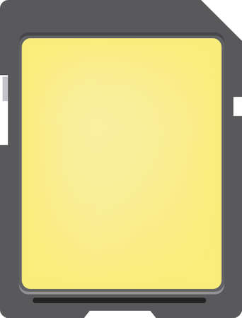 Basic blank Memory Card for digital devices.