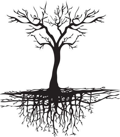 Classic tree without leaves with root system 向量圖像