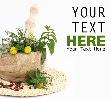 homeopatia: Mortero y pil�n con hierbas y especias Foto de archivo