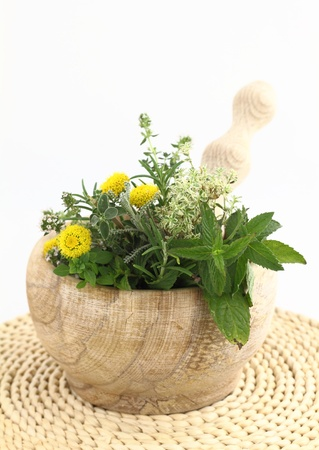 Mortar and pestle with herbs and spices Stock Photo - 9902042