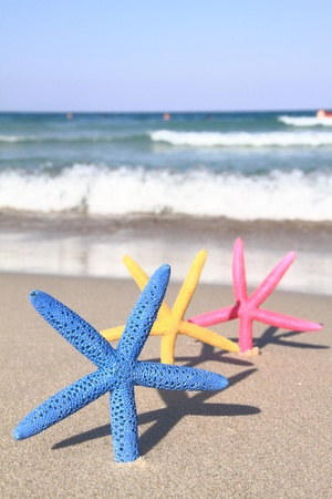 Colorful starfish on the beach at summer photo