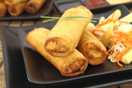 Spring rolls on a plate Stock Photo - 10822359