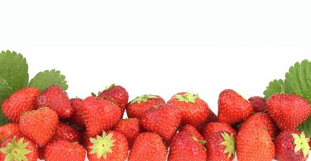 fresa: Banner de fresas frescas maduras Foto de archivo
