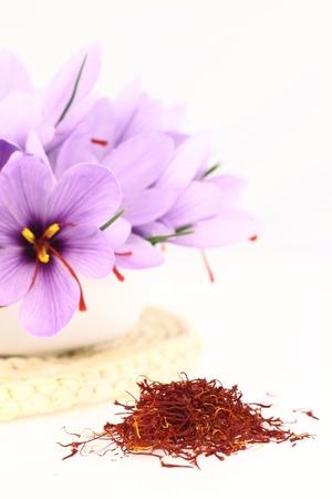 Dried saffron spice and Saffron flowers photo