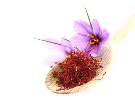 Dried saffron spice and Saffron flowers