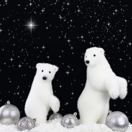polar light: White bear on snow at Christmas night Stock Photo