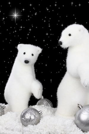 White bear on snow at Christmas night photo