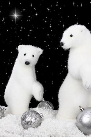 White bear on snow at Christmas night photo