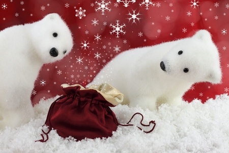 White bear on snow at Christmas photo