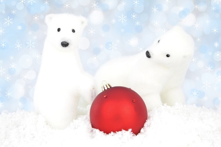 White bear on snow at Christmas photo