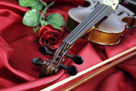 violines: Violín Foto de archivo