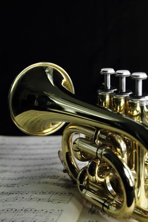 trompeta: Vestido con una hoja de m�sica