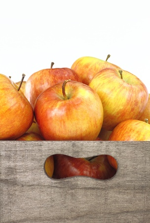 Wooden box full of apples photo