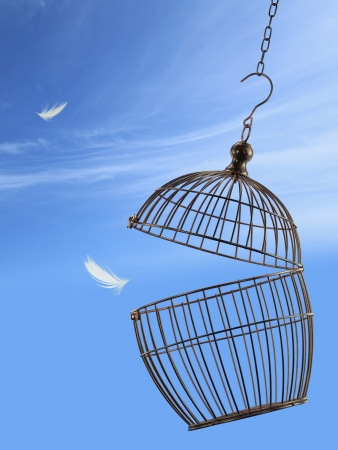 fuga: Freedom concept. Escaping from the cage