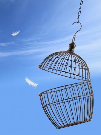 gabbie: Freedom concetto. Sfuggire dalla gabbia Archivio Fotografico