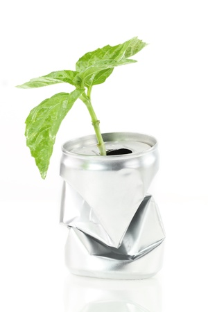 aluminum can: New life. Aluminum can with growing green plant