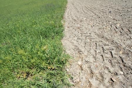 tierra fertil: Tierra f�rtil y tierra �rida