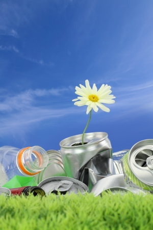 Environmental conservation concept. Garbage with growing daisy  photo