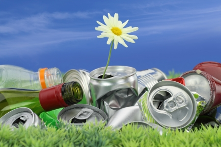 環境保全のコンセプトです。デイジーの成長でごみ 写真素材