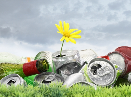 aluminium: Garbage with growing daisy under storm clouds