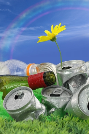 Garbage with growing daisy under rainbow photo