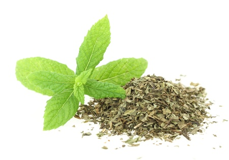 Fresh and dry mint photo