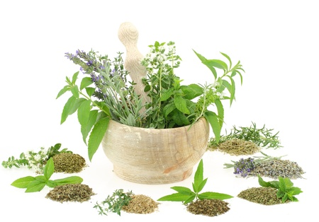 mortar and pestle medicine:  Mortar and pestle with herbs and spices