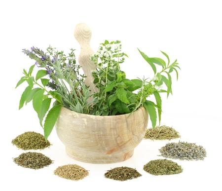 mortero: Mortero y majadero con hierbas y especias