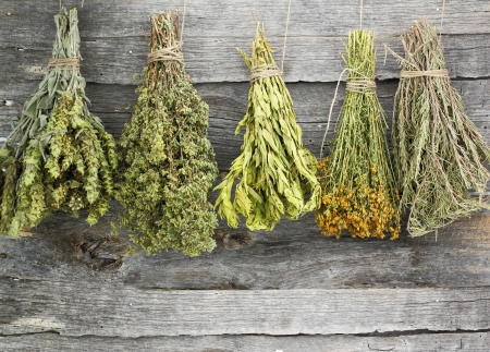 dried herb: Variety of dried herbs on an old wooden background