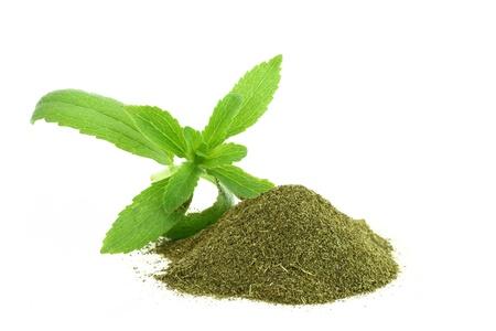 naturopathy: Fresh and dry Stevia Rebaudiana  Stock Photo