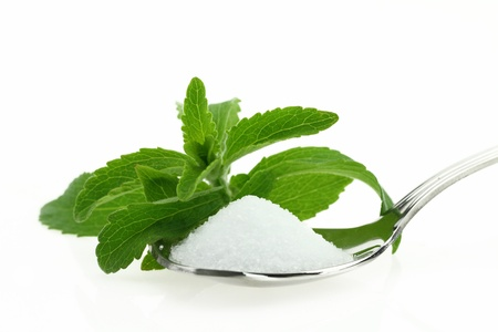 sweetener:  Fresh Stevia Rebaudiana and sugar in a spoon