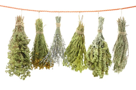 dried spice: Variety of dried herbs hanging on a rope Stock Photo