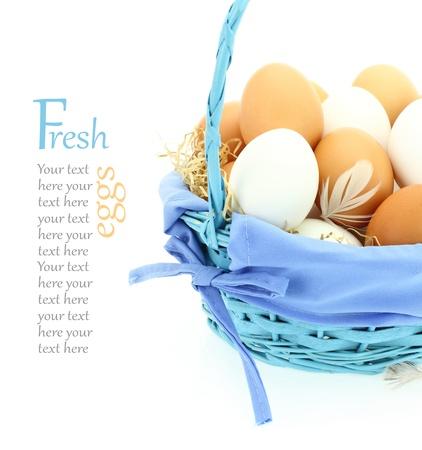 cholesterol free: Fresh eggs in the basket