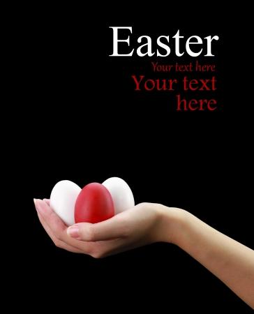 Female hand holding Easter eggs Stock Photo - 15962141