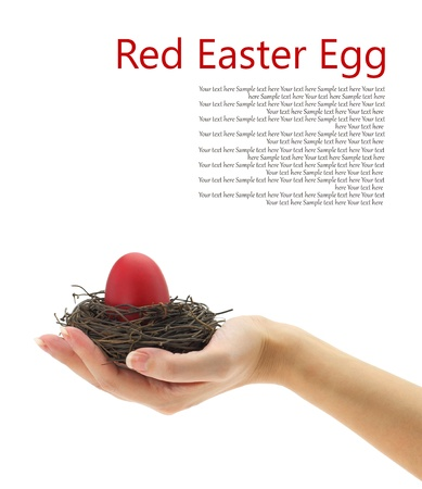 Female hand holding a red Easter egg in the nest  Stock Photo - 15962177